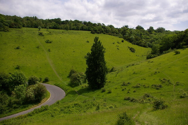 Box Hill ZigZag